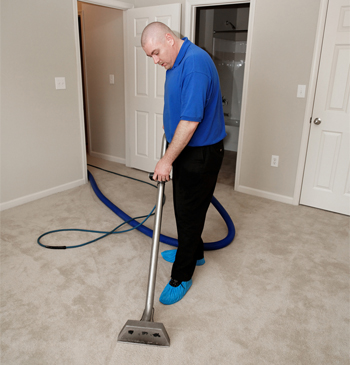 How to Clean Your Rugs and Remove Odours after Urine Damage