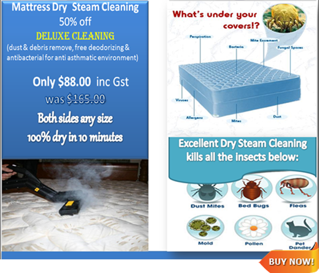 Mattress cleaning final