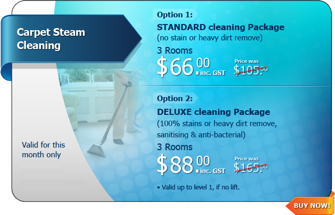 Hot Deal - Carpet Steam Cleaning