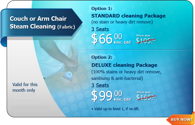Hot Deal - Couch or Arm Chair Steam Cleaning