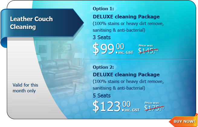 Hot Deal - Leather Couch Cleaning