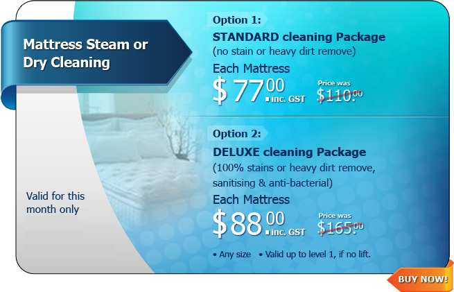 Hot Deal - Mattress Steam or Dry Cleaning
