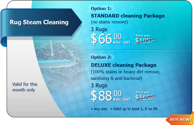 Hot Deal - Rug Steam Cleaning
